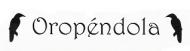 Oropendola