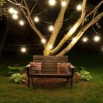 Guirnaldas de luces de feria, las reinas de la noche