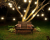 guirnaldas_luces_feria_banco_jardin